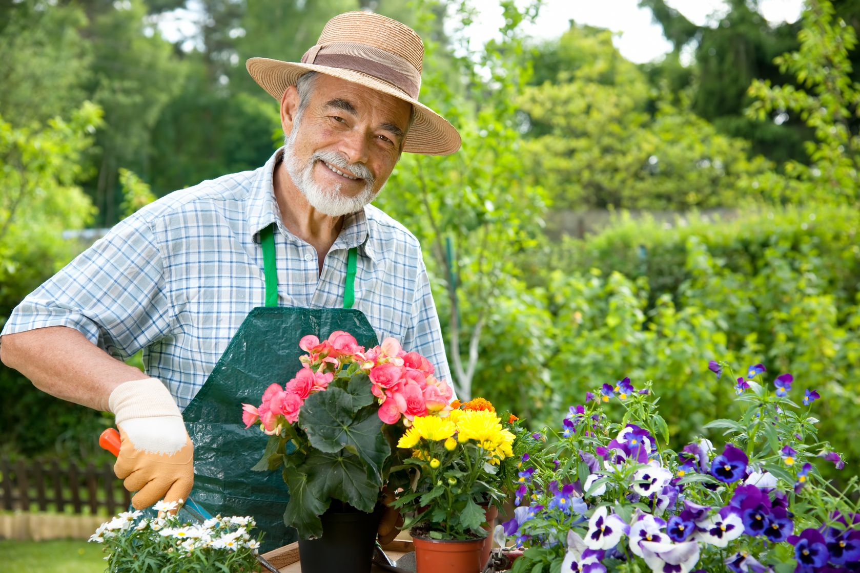 Senior Care Los Angeles Gardening